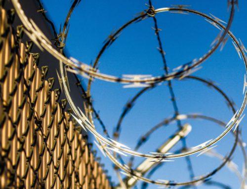 The Shape Of Razor Wire Barbs