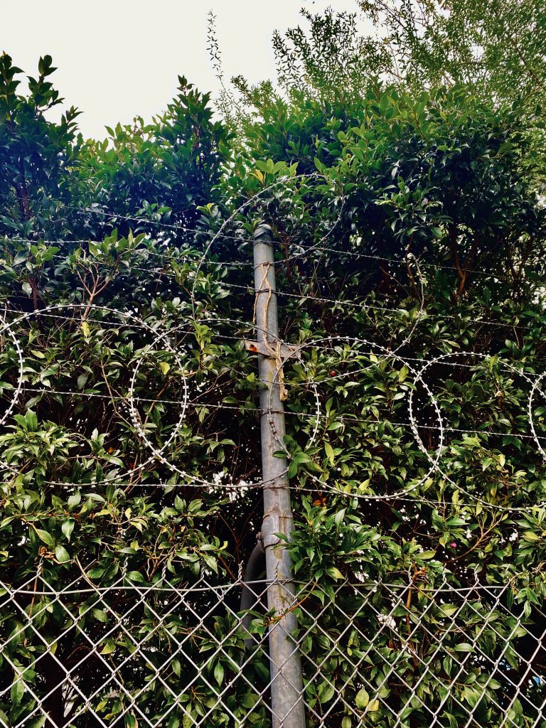 barbed wire in Melbourne